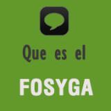 Que es el Fosyga
