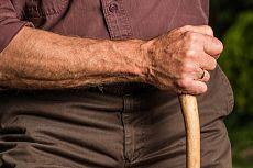Primero pension familiar reconocida