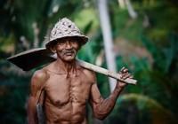 Consideraciones del traslado regimen pensional